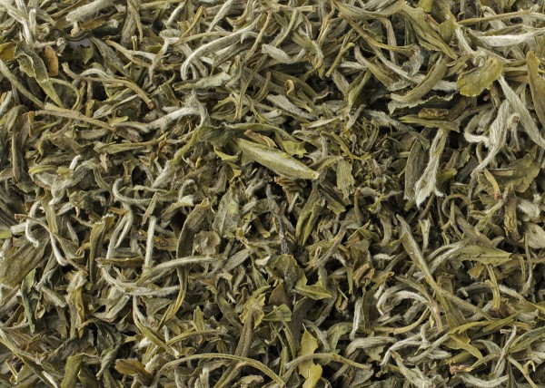 Organic China White Fujian Silver Needle